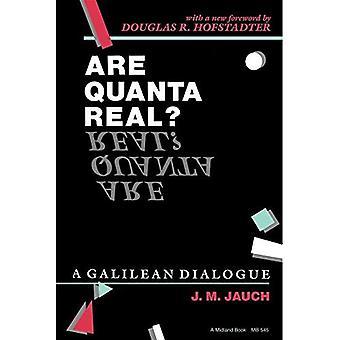 Sind Quanten Real?: einen galiläischen Dialog