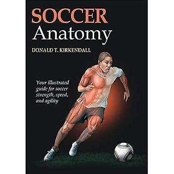 Anatomie van de voetbal