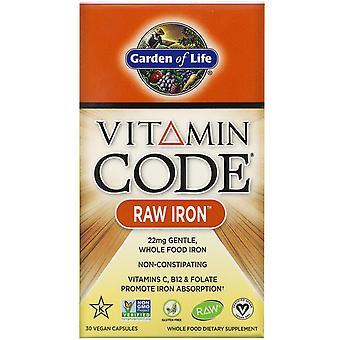 Garden of Life, Vitamin Code, RAW Iron, 30 Vegan Capsules