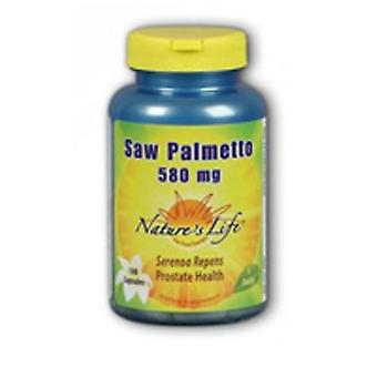 Nature's Life Saw Palmetto, 500 mg, 100 caps