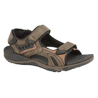 PDQ Gage Mens Sporty Touch-fasten Sandals Dark Brown