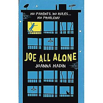 Joe All Alone (Little Brown Young Readers)