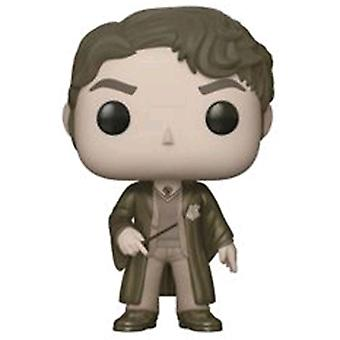 Harry Potter Tom Riddle Sepia US Exclusive Pop! vinyle
