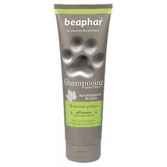 Beaphar Alta kosmetika schampo för Precision rockar