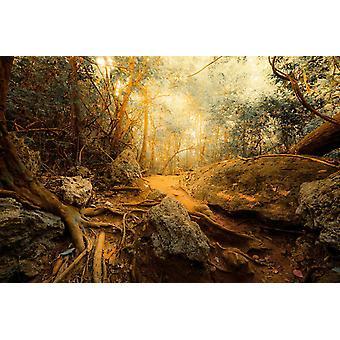 Mural de papel de parede Fantasia Floresta da Selva