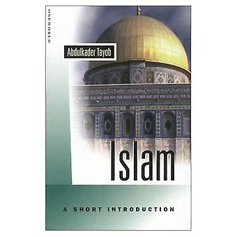 Islam: A Short Introduction (Oneworld Short Guides)