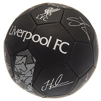 Liverpool FC Phantom Signature jalka pallo