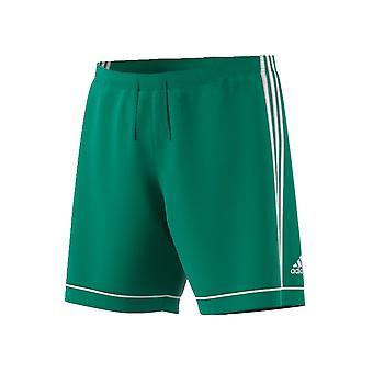 Adidas Squadra 17 BJ9231 futbol tüm yıl erkek pantolon