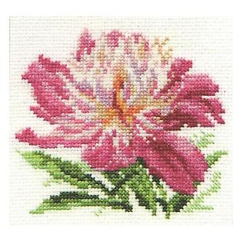 Kit Alisa Cross Stitch - Peônia Rosa