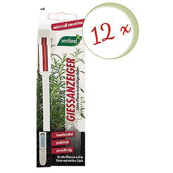 Sparset: 12 x WESTLAND® Gießanzeiger für Blumenerde, 16 cm weiß