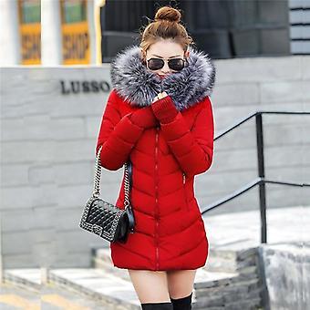 Artificial Raccoon Fur Collar Winter Jacket, Women Winter And Autumn Wear,