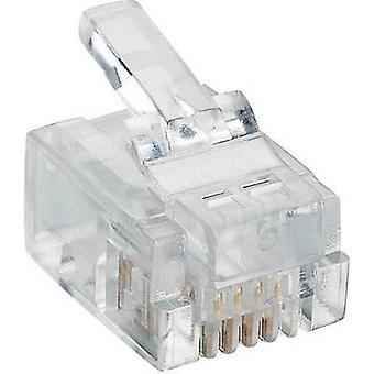 Lumberg P 127 modulaire Plug 6p4c RJ11 stekker, rechte transparant