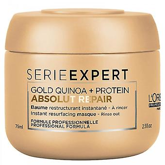 L'oreal DISCONTINUED L'Oreal Professionnel Série Expert Absolut Repair Masque