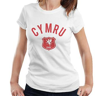 Toff Vintage Football Wales Women's T-Shirt