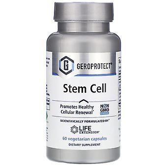 Prolongation de la durée de vie utile, Geroprotect, Cellules souches, 60 capsules végétariennes