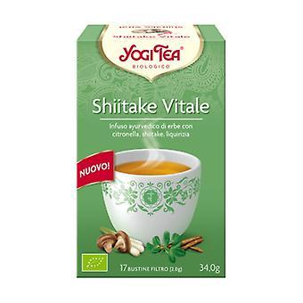 Vital Shiitake Infusion 17 infusion bags