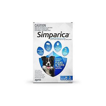 Simparica Med koira 10.1-20kg sininen 3pk