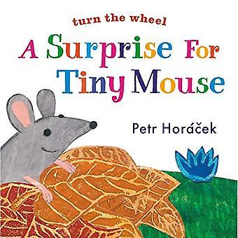 En överraskning för liten mus