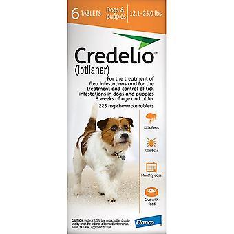Credelio Orange Medium Dogs 5.5-11 kg (12.1-25 lbs) 6 Pack