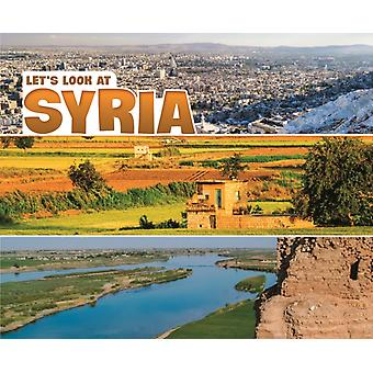 Lets Look at Syria by Nikki Bruno Clapper
