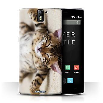 STUFF4 Case/Cover for OnePlus One/Flat Out/Cute Kittens