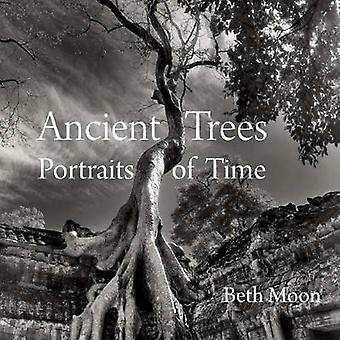 Ancient Trees Portraits of Time by Beth Moon