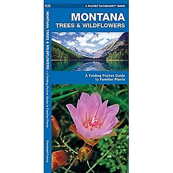 Montana Trees & Wildflowers: An Introduction to Familiar Species (Pocket Naturalist Guides)