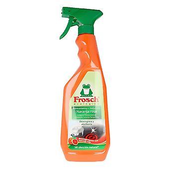 Nettoyeur de surface Kitchen Frosch (750 ml)