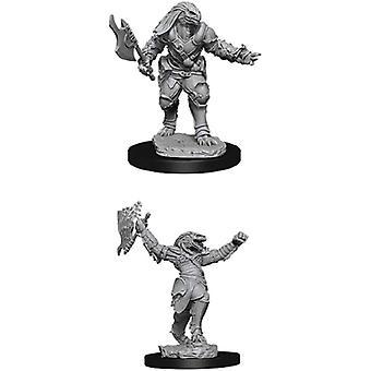 D&D Nolzur's Marvelous Unborented Miniatures Female Dragonborn Fighter Pack Of 6