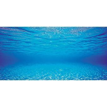 Juwel Aquarium uk korlátozott kétoldalas tank háttér poszter 2 Blue Ocean