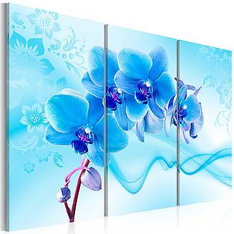 Quadro - Orchidea eterica - blu