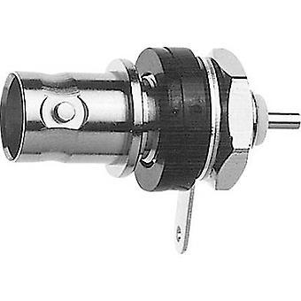 Telegärtner J01003C1286 J01003C1286 BNC connector Socket, built-in 75 Ω 1 pc(s)