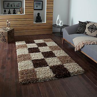 Vista-Hochflor Teppiche 2247 überprüfen Beige Braun