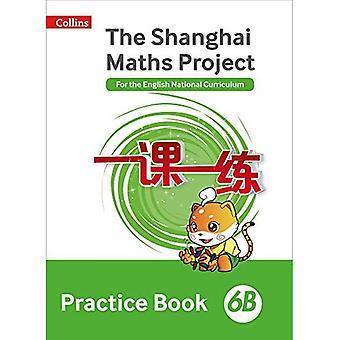 La pratica di progetto di Shanghai matematica prenotare 6B (matematica di Shanghai) (matematica di Shanghai)