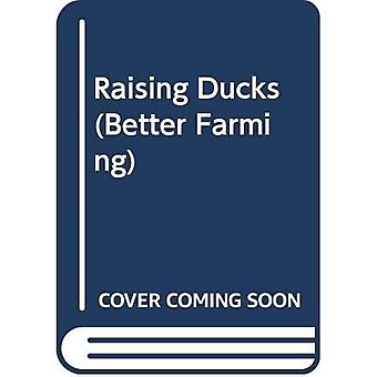Raising Ducks: Further Improvement - A Larger Flock v. 2 (Better Farming)