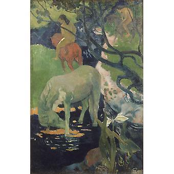 The White Horse, Paul Gauguin, 60x40cm