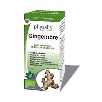 Ginger Essence 10 ml