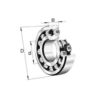 NSK 2304-2RSTN Double Row Self Aligning Ball Bearing 20x52x21mm