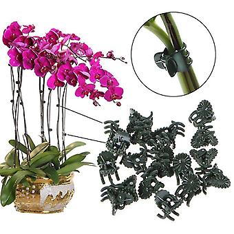 Plastic Garden Clip Special For Graft Plant Vine Clip Orchid Stem Support