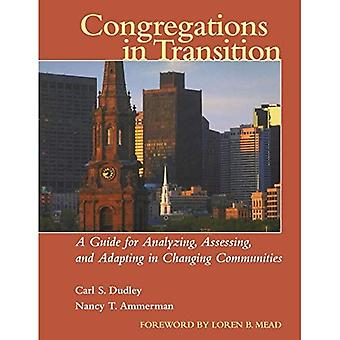 Congregazioni in transizione: una guida per analizzare, valutare e adeguare nel cambiare comunità