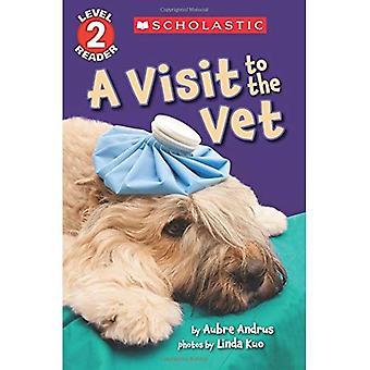 Una visita dal veterinario (lettore scolastico: livello 2)