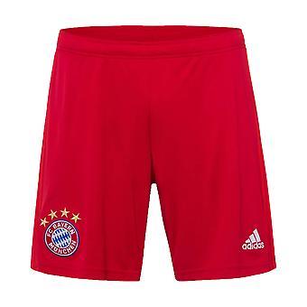 20-2020 Bayern München Adidas Home Shorts. (Red)