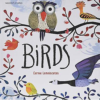 Birds by Carme Lemniscates - 9781406387339 Book