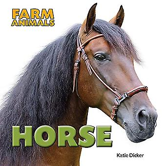 Farm Animals - Horse by Katie Dicker - 9781445151069 Book
