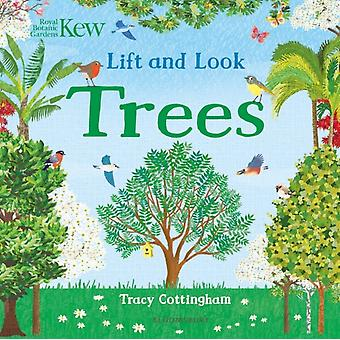 Kew Lift and Look Trees by Illustrated by Tracy Cottingham