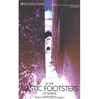In the Mystic Footsteps of Saints: v.1: Vol 1 (Sufi Wisdom)