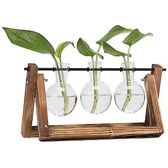 FengChun Glühbirne Vase mit Vintage Holzständer und Metall rotierende Nade für Hydroponics Pflanzen Desktop