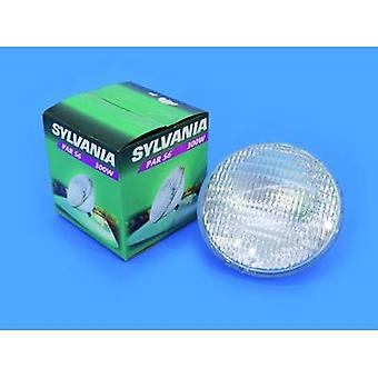 Sylvania Par-56 Lampe Halogen 12 V G53 STC 300 W White
