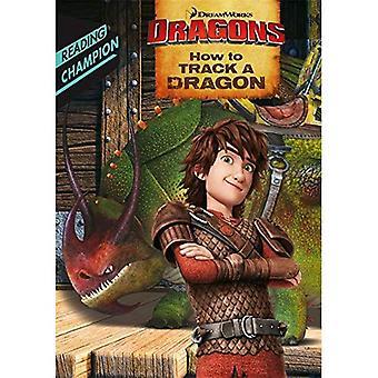 Hoe op te sporen van een draak (Dragon DreamWorks lezers)