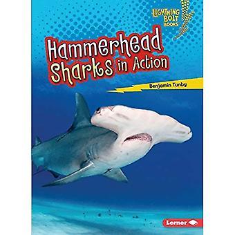 Hammarhajar i aktion (Lightning Bolt böcker Shark World)